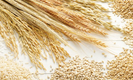 L'Indice FAO a reculé de 3,5%  en 2018