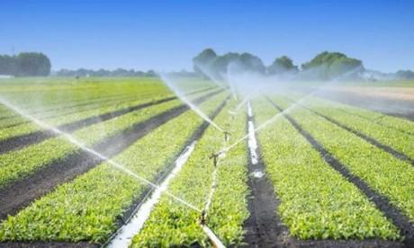 Un projet d'aménagement hydro-agricole de 5.400 ha à Taounate