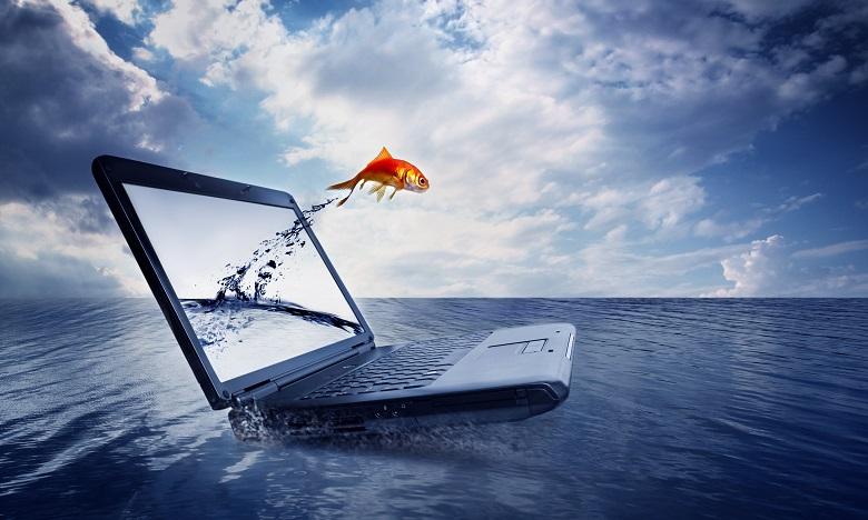 La thématique de cette édition se focalisera sur : «Les nouvelles technologies dans la pêche: pour une meilleure contribution halieutique dans l'économie bleue». Ph. Shutterstock