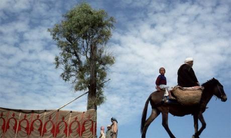 Ouverture de l'exposition «Le Maroc d'ombre et de lumière» de Daoud Aoulad Syad