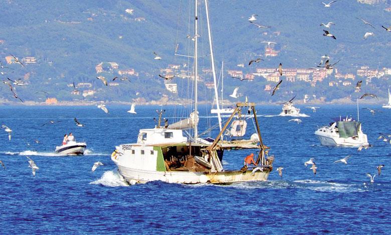 Le Maroc et l'Australie déterminés à renforcer  leur coopération dans les secteurs de l'agriculture  et de la pêche maritime