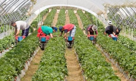 Une convention pour l'accompagnement des travailleurs saisonniers en Espagne