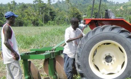 Une convention avec la FAO  pour doubler le taux de mécanisation