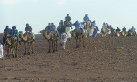 Festival international des nomades: l'édition 2019 se prépare