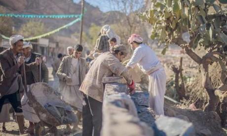 L'agriculture emploie 53% de la population active yéménite. Ph. FAO