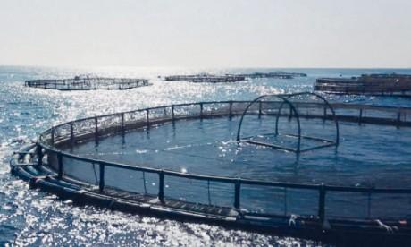 Un produit dédié à l'aquaculture