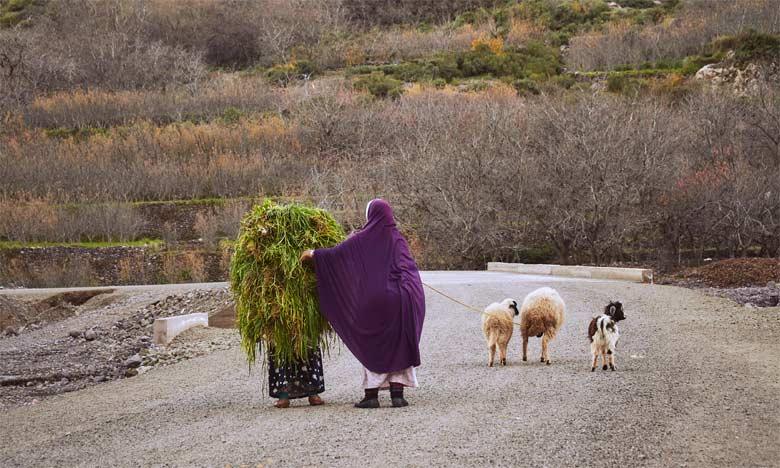 Les Soulaliyates, vers la récupération de leurs droits