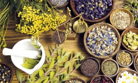 350.000 ha valorisés dans les régions de l'Oriental et Fès-Meknès