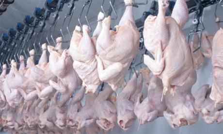 Poulet congelé américain : Les aviculteurs  n'en veulent pas, les industriels le réclament !