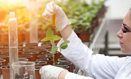 La formation professionnelle, levier du développement de l'agriculture