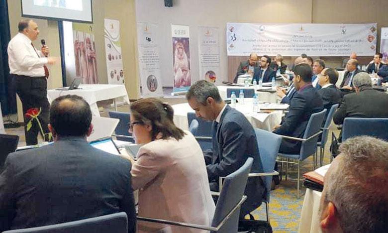 Le HCEFLCD vise à développer un programme de sensibilisation à la lutte contre le commerce illégal des espèces sauvages. Ph. DR
