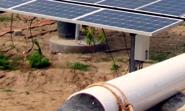 Efficacité énergétique  : Le pompage solaire au service de l'agriculture