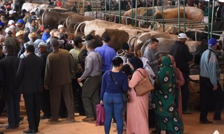 SIAM : L'amélioration socioéconomique du monde rural requiert des mutations du secteur