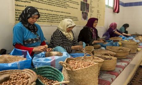 Les coopératives agricoles, un vecteur d'émancipation sociale  et de développement économique