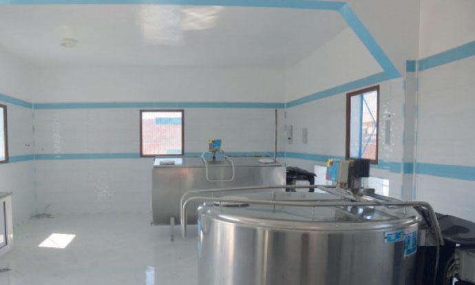 Un «village Modèle» pour améliorer  la productivité des vaches laitières