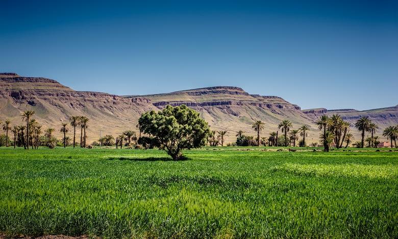 Les montagnes de l'Atlas-Maroc. Ph. SHUTTERSTOCK