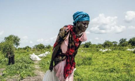 Environ 13 millions  de personnes dans 53 pays souffrent de malnutrition