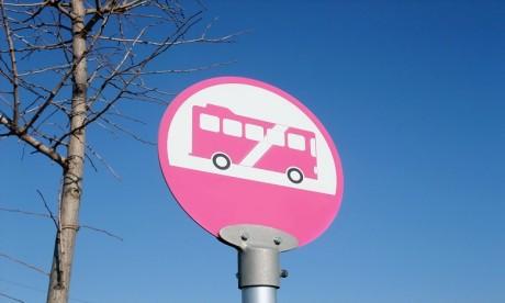 Ces Bus roses soulèvent la polémique!