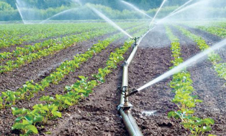 L'opération portera sur l'identification et le démarchage d'au moins 60 agrégateurs potentiels pour la mise en œuvre des projets d'agrégation agricole et l'accompagnement d'un nombre minimum de 30 autres agrégateurs.