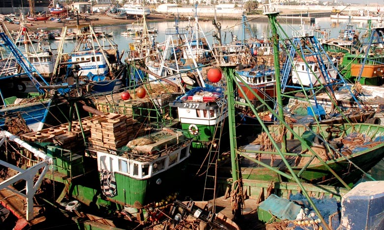Les débarquements de pêche progressent de 15% à fin avril