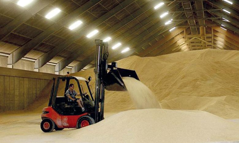 Les stocks mondiaux de céréales devraient connaître une légère baisse en 2019 pour atteindre les 847 millions de tonnes. Ph. DR