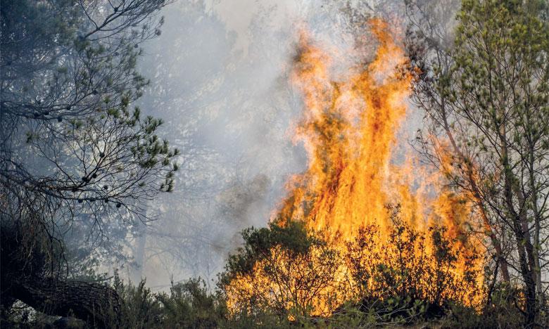 La Direction régionale des eaux  et forêts appelle à la vigilance