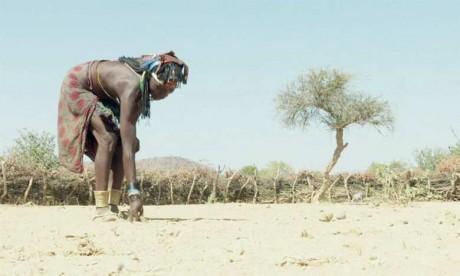 La Namibie décrète l'état  de catastrophe naturelle
