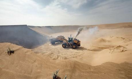 Le cinquième Rapport national sur la biodiversité indique que l'une des principales menaces est de nature anthropique, matérialisée par l'urbanisation et la littoralisation qui puisent des matériaux de construction dans les dunes littorales, les lits d'oueds et les carrières. Ph. DR
