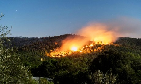 Sept incendies ravagent 9,94 ha à Taounate en 2018