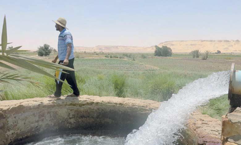 Des études récentes ont estimé à 9 milliards de dollars par an le coût de la dégradation des terres dans la région MENA, soit entre 2 et 7% du PIB, selon les pays.  Ph. DR