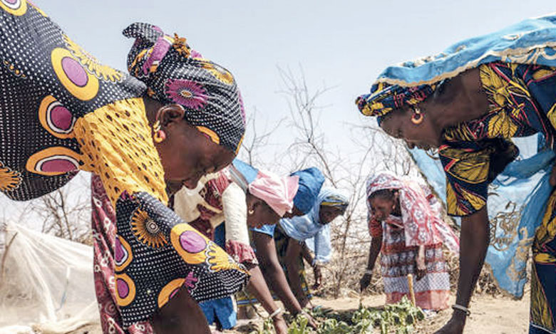 Le programme a pour objectif d'autonomiser les femmes dans les ménages, communautés et institutions en zones rurales. Ph. FAO