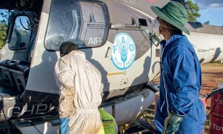 La Commission de la FAO  se réunit à Agadir