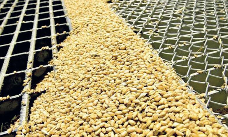 Le Grain & Milling expo est prévu à l'AMDIE-Foire Internationale de Casablanca.