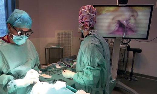 Les interventions chirurgicales ont débuté le 14 juin et s'achèveront demain samedi 22.