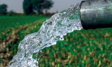 L'agriculture face  au stress hydrique