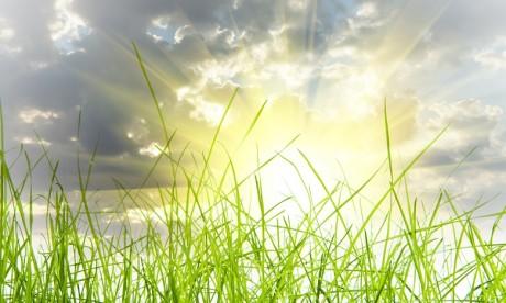 Ciel clair et temps assez chaud ce lundi