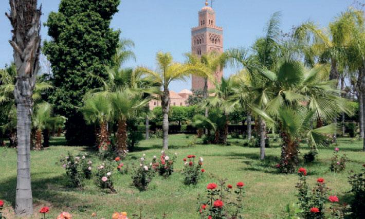 Les espaces verts, un refuge de fraîcheur durant le Ramadan