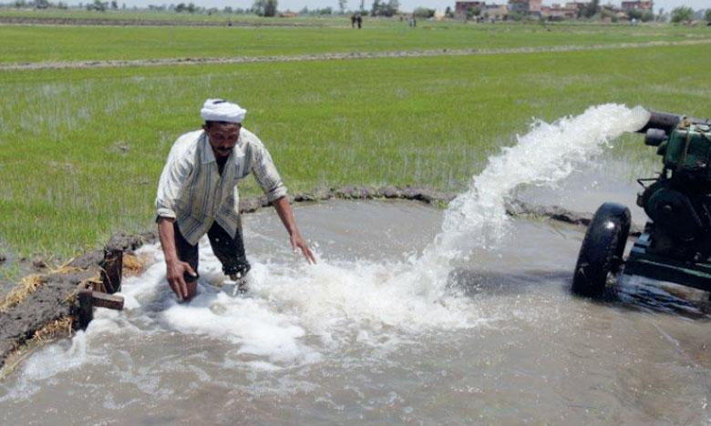 La FAO déplore le «manque évident de gouvernance»