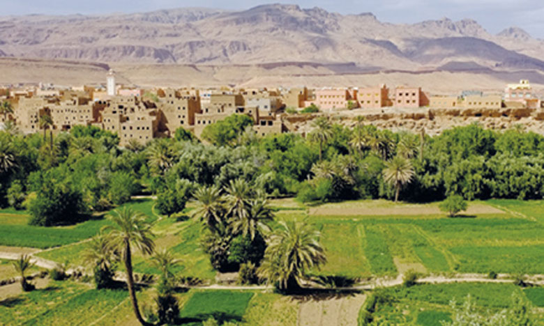La Banque mondiale, la FAO et l'ANDZOA se concertent à Marrakech