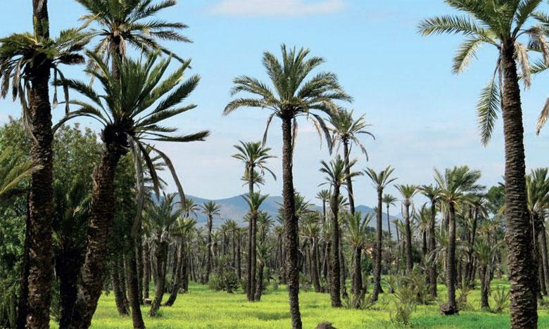 La région ambitionne de promouvoir un tourisme culturel et écoresponsable