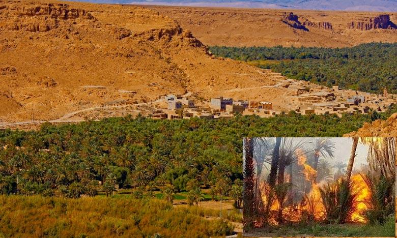 L'incendie qui s'est déclaré dans l'oasis de Ziz serait causé par la vague de chaleur qui sévit dans la province d'Errachidia durant cette période de l'année. Ph : DR