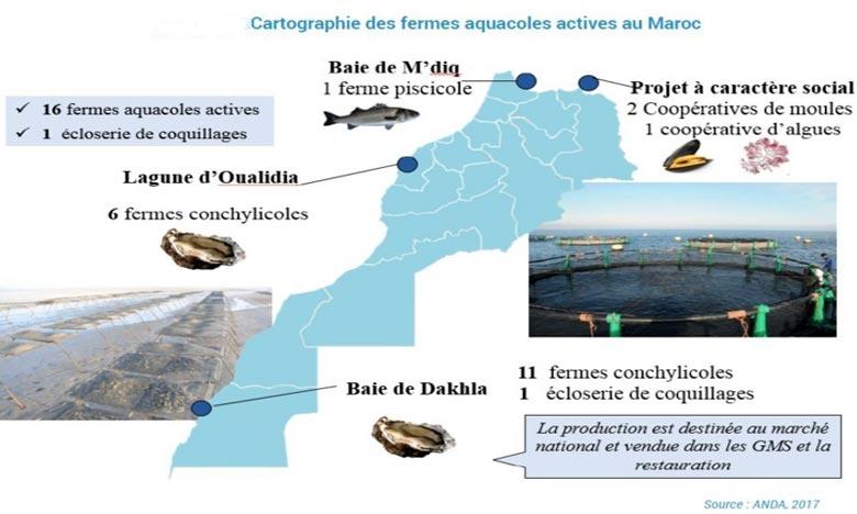 Aquaculture: L'ANDA présente son bilan 2018-2019