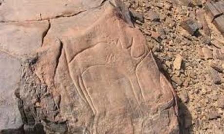 Spin-Off by PIS : Les meilleures recherches de géologie récompensées à Errachidia