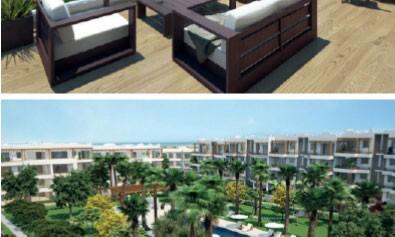 Le premier projet résidentiel signé Héritage Immobilier lancé à Cabo Negro