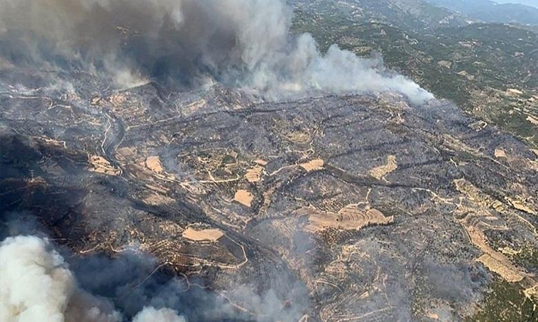 Espagne: arrestation d'auteurs présumés de onze incendies de forêt