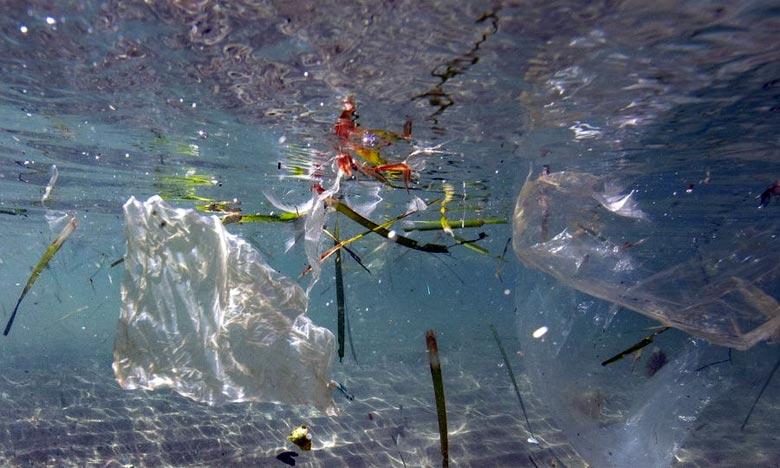 L'OMS plaide également pour une réduction de la pollution par le plastique pour protéger l'environnement. Ph :  AFP