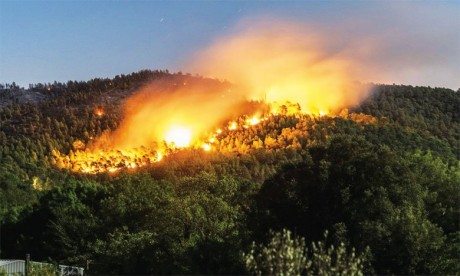 L'île d'Eubée en Grèce victime d'un important incendie de forêt