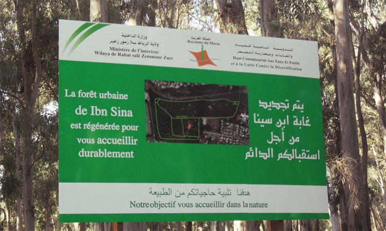 La forêt Ibn Sina, le refuge préféré des sportifs