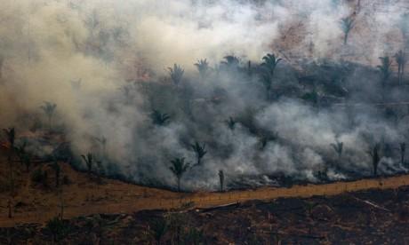 Incendies en Amazonie : le G7 va débloquer 20 millions d'euros d'aide