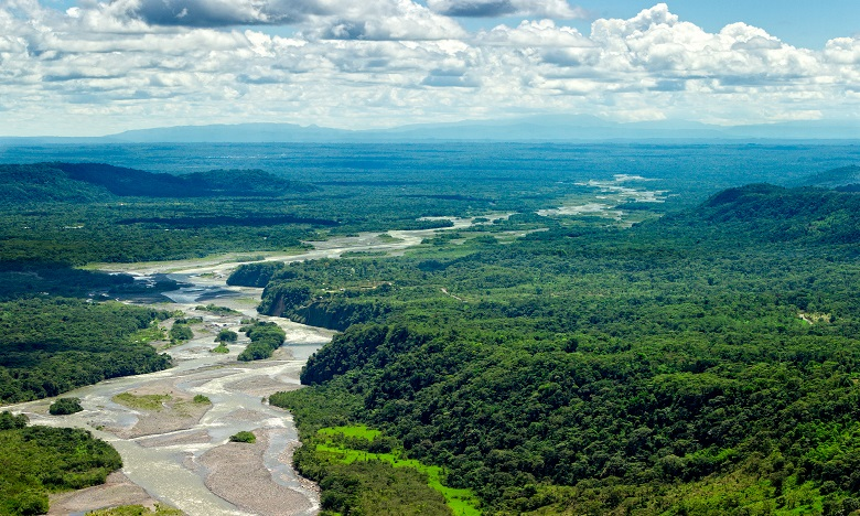 Six choses à savoir sur l'Amazonie